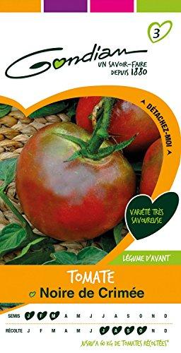 Gondian 511977 Semences - Tomate Noire de Crimee - CP 3, Rouge, 1x8.1x16 cm