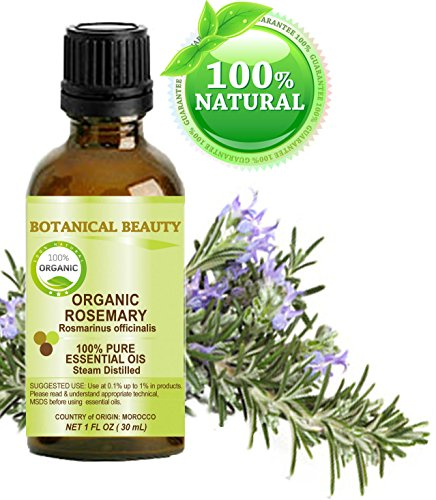 Organic ROSEMARY Essential Oil. 100% Pure Therapeutic Grade, Premium Quality, Undiluted, Steam...