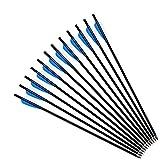 "Funtress 20"" Ballesta pernos de caza flechas 4"" Vane plumas Flechas con el campo Puntos de puntas reemplazables para orientación o la caza"