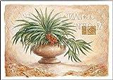 Keilrahmen-Bild - Claudia Ancilotti: Tizian Leinwandbild Stillleben floral modern beige (35x50)