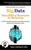 Big Data para CEOs y Directores de Marketing: Como dominar Big Data Analytics en 5 semanas para directivos (Spanish Edition)