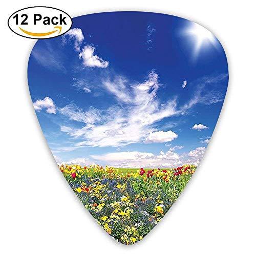 Blumen Wiese und bewölkten Himmel Natur Landschaft Print lebendige Sonne Licht Frühling Kunst Plektren 12 Pack Für E-Gitarre, Akustikgitarre, Mandoline und Bass -