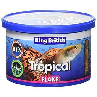 King British Tropical Fish Flake 55g 27