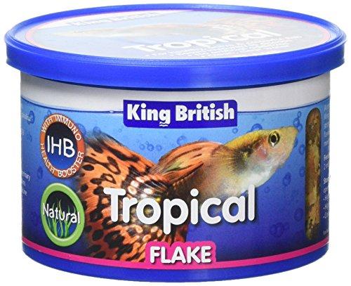 King British Tropical Fish Flake 55g 1