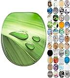 WC Sitz mit Absenkautomatik, viele schöne WC Sitze zur Auswahl, hochwertige und stabile Qualität aus Holz (Green Leaf)