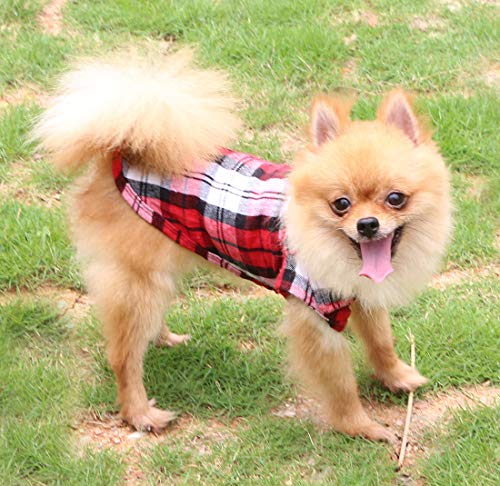 QiCheng&LYS Pet Hundemantel mit Welpen Plaid Shirt Kurzarm Sommer Kleidung (Rot M) (Rote Kurzarm Kostüm)
