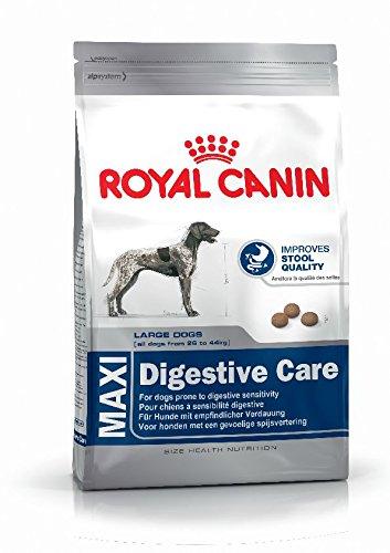 Royal Canin (ROYBJ) Hundefutter Digestive Care, 1er Pack (1 x 15 kg)