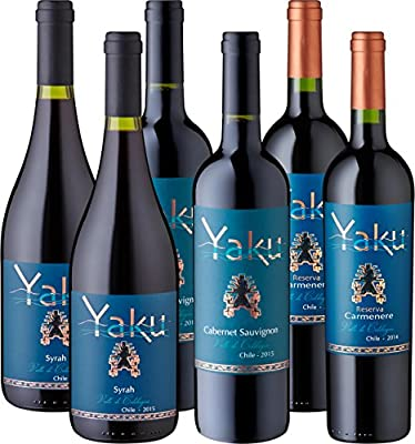 Meevio Yaku - Grillweine vom besten Weingut Chiles (6 x 0.75 l)