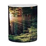 Tazza da caffè in ceramica senza piombo Tazza da tè bianca Parchi nazionali Oggettistica per la casa 11 once Tazza da caffè divertente Mattina Luce solare in natura selvaggia Yosemite Sierra Nevada Na