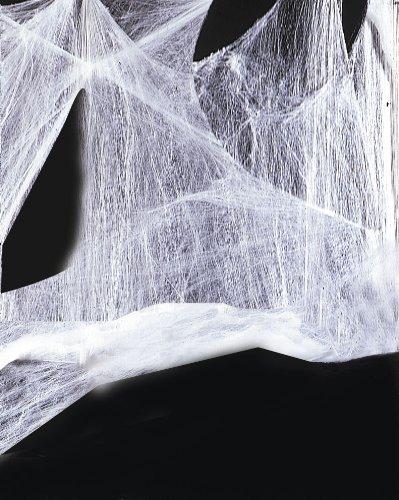 Hilka 25035800 - Spinnennetz mit Spinne (Halloween Spinnennetz)