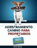 Adiestramiento Canino Para Propietarios