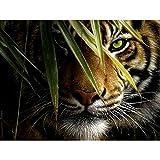 MAIYOUWENG Collection Classici di Legno Puzzle 1000 Pezzi- Animale Tigre della Giungla Gioco Intellettuale per Adulti E Bambini