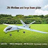 Z51 Predator 2.4G 2CH 660mm Envergure RC Avion à voilure fixe Planeur Drone (Couleur: Blanc-bleu)