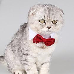 inolite ajustable lazo perros cachorro mascota disfraz cuello rayas gatos cuello ropa perfecto para boda accesorios de fiesta