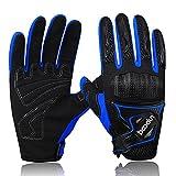 ARTOP Motorrad Handschuhe, Motorrad Cross Atmungsaktiver Handschuh mit Schutz PVC Shell Für Männer Frühling-Sommer-Herbst(Blau,L)