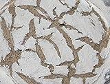 Bio Sauerteig (Roggensauer) | aus 100% Demeter Roggenmehl | frischer Natursauerteig - perfekt für Brote oder...