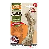 Nylabone Animal Alternative Antler Dog Chew, Medium