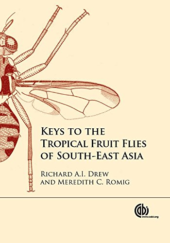 Keys to the Tropical Fruit Flies of South-East Asi: (Tephritidae: Dacinae)