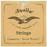 Aquila 1CH Charango Strings Medium Tension - Super Nylgut