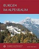Burgen im Alpenraum (Forschungen zu Burgen und Schlössern / herausgegeben von der Wartburg-Gesellschaft zur Erforschung von Burgen und Schlössern e.V.)