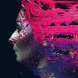 Steven Wilson: Hand.Cannot.Erase (Audio CD)