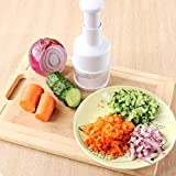 AllExtreme Garlic/Onion/Vegetable/Salad Chopper and Slicer Dicer Manual Mini Hand Chopper Onion Garlic Mincer with Cover for Vegetables - Stainless Steel Cutter Blade Great Seasoning & Spice Tools For Your Kitchen