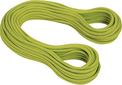 Mammut Einfachseil 9.5INFINITY Dry Dry Standard. pappel-limegreen–Saiten, Unisex, grün–(pappel- Lime Green)