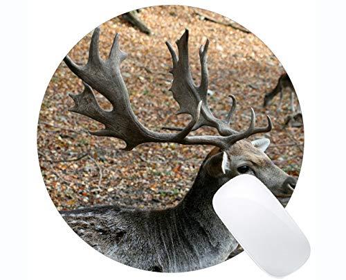 usunterlage für Desktops, männliches Waldgeweih der Rotwild - genähte Ränder ()