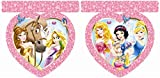 Disney Princess 2,6 m Tiere Party Banner