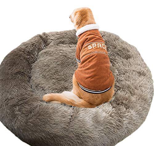 Wiliharui Cama para Perros