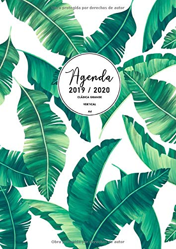 Agenda Clásica Grande 2019 2020: Agenda 2019/2020 Semana Vista Vertical | Agenda 17 Meses | Agosto 2019 - Diciembre 2020 | Agenda en español | Tamaño A4 | Hojas de palma
