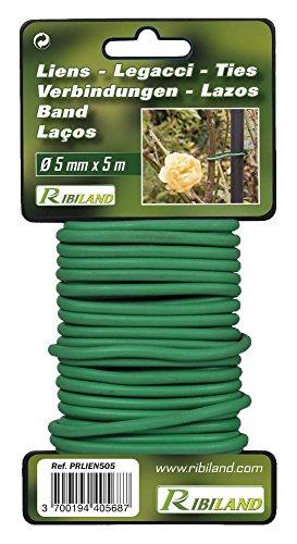 Lien pour plantations 5m