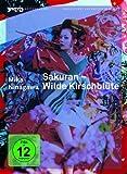 Sakuran Wilde Kirschblüte (Intro kostenlos online stream