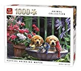 King Animal Collection Puppies Drinking 1000 pcs Puzzle - Rompecabezas (Puzzle Rompecabezas, Fauna, Adultos, Perro, Hombre/Mujer, 8 año(s))