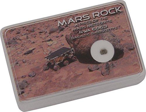 echter-mars-meteorit-nwa-6963