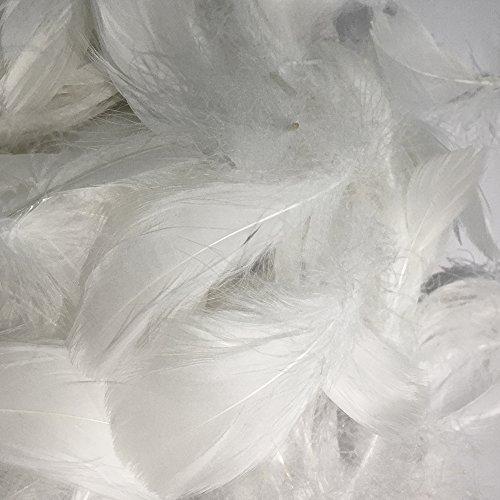 SUNMI 200er Weiß Federn 8-12 -
