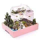 Perfecto Original pecera con forma de casa con jardín para tus peces