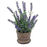 Pinkdose künstliche Blumen aus Kunststoff Lavendel Arrangements in Töpfen für Hausgarten Dekor: 2