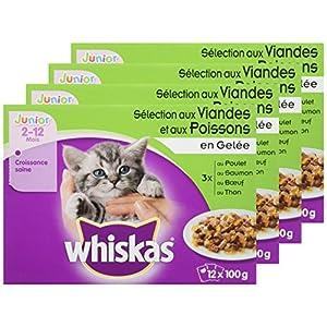 Whiskas Junior - Sachets fraîcheur pour jeune chat et chaton (2-12 mois), sélection mixte en gelée, 48 sachets repas de…