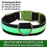 MAILUX LED Hundehalsband Grün - Größe S - verschiedene Leuchtmodi