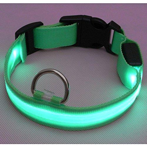 Sijueam Nylon USB Hundehalsband LED Halsband Leuchthalsband mit USB Kabel für Haustier Hunden Grün, L - 2