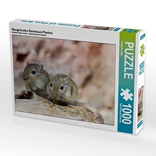 Mongolisches Rennmaus-Pärchen 1000 Teile Puzzle quer (CALVENDO Tiere)