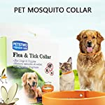 umiwe adjustable flea and tick collar for cats dogs natural herbal anti flea collar waterproof non-toxic flea collar for small medium large dogs UMIWE Adjustable Flea and Tick Collar for Cats Dogs Natural Herbal Anti Flea Collar Waterproof Non-toxic Flea Collar for Small Medium Large Dogs 51bfw5JT FL