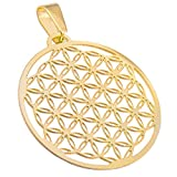 Blume des Lebens, Flower of Life Ketten-Anhänger Edelstahl Gold poliert 35mm