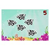 Skola-Toys-Counting-Fish-Match-Quantities-to-Numbers