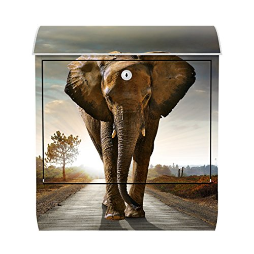 Wilde Tiere Wand (Roomidentity Briefkasten Bild Wand Big Elephant on Street Tier Wild Elefant Safari Straße Wüste Steppe Savanne Kunst Druck Art Modern Deko No.117)