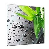 Glasbild - Frischer Bambus - 30x30 cm - Deko Glas - Wandbild aus Glas - Bild auf Glas - Moderne Glasbilder - Glasfoto - Echtglas - Kein Acryl - Handmade