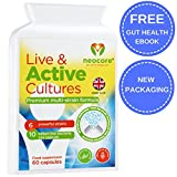 Live Bacterial Cultures for Adults | Vegan Friendly | High Strength 10 Billion