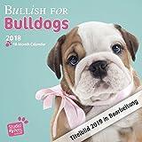 Bullish for Bulldogs - Bulldoggen 2019 - 18-Monatskalender (Myrna-Kalender)