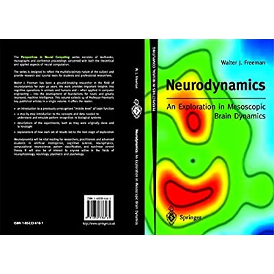 Neurodynamics: An Exploration in Mesoscopic Brain Dynamics: An Exploration in Mesoscopic Brain Dynamics (Perspectives in Neural Computing)